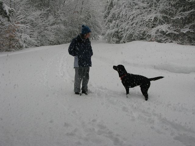 Beau & Mom playing in snow